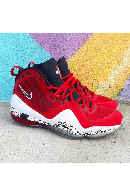 Nike Air Penny V Red Eagle...